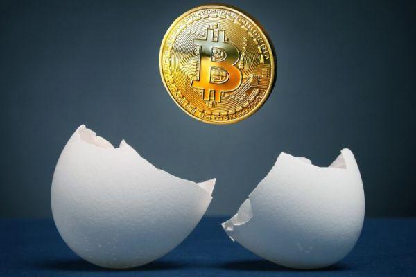 11th Anniversary of Bitcoin Genesis