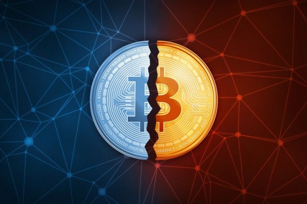What is Bitcoin halving?